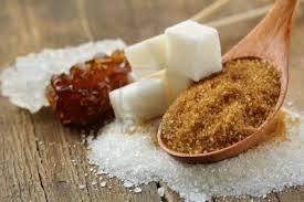 sugar - health and fitness training