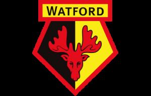 Watford FC Girls Academy