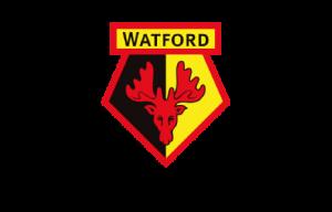 Watford Girls FC