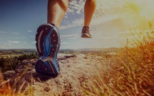 fitness-courses-summer-deals
